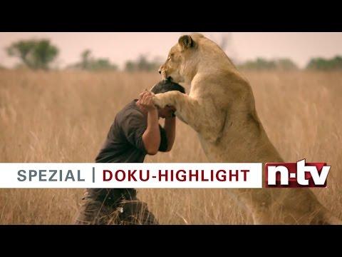 Die n-tv Doku-Highlights 2017