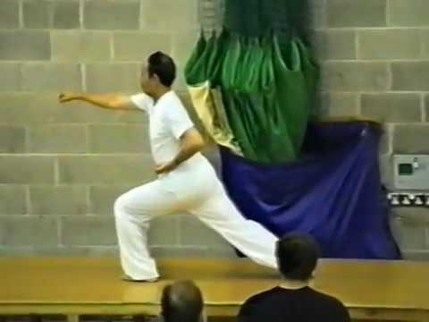 Li De Yin 24 step seminar 1995 hosted by Alan McDonnell