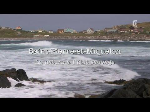 SAINT-PIERRE-ET-MIQUELON, la nature à l'état sauvage (2016)