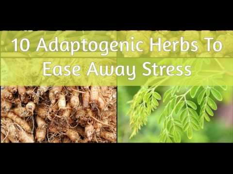 Adaptogens | Adaptogenic Herbs | Top 10 Adaptogens that ease stress