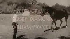 Fernsehserie ► Fury auf Deutsch [1955/1960]