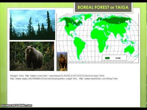 Terrestrial Ecosystems Part 1