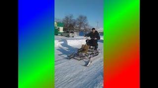 Noyob snowmobile Ayu Menzelinsky tumani qishloqda maktabda qildi