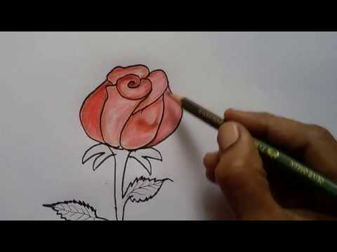 How To Draw Rose Easy Step By Step Learn Drawing Rose Flower Easy Youtube