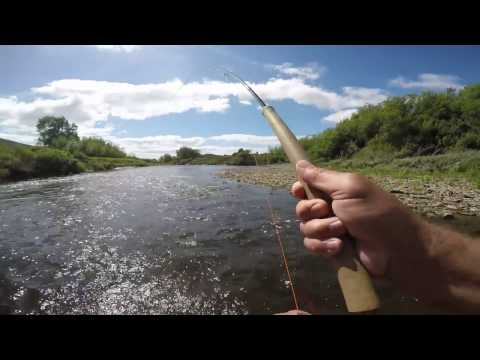 Salmon Fishing on the river Usk (2016)