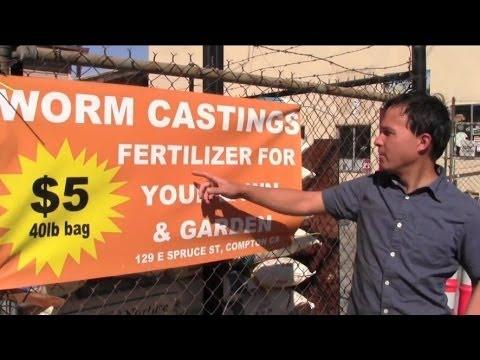 Low Cost Organic Fertilizer That Makes Your Plants Go Wild
