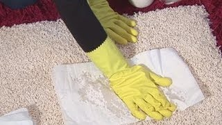 How To Get Cat Pee Out Of Carpet