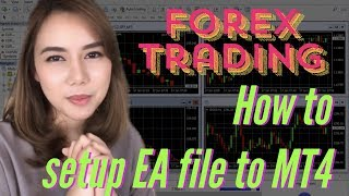 Forex Trading - How to set EA files to MT4 ( short ver.)