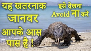 Top 10 Most Dangerous & Deadliest Animals To Humans