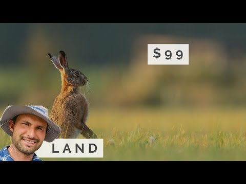 $99 Land Sale