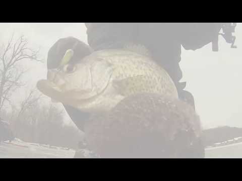 Mississippi River Crappie Crushin' Through the Ice!