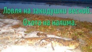 Охота и рыбалка - Грибная охота - Форум на Kuban.ru