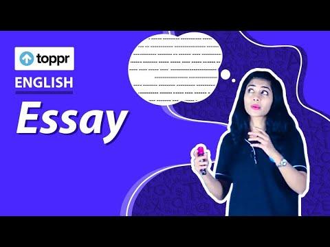 Class 10 English: Writing   Essay