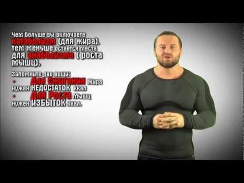 Денис Борисов о жирных телках