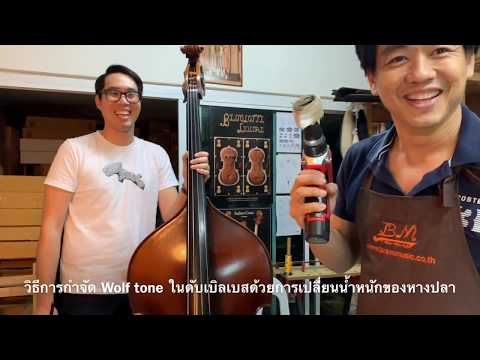 Fixing Wolf Tone on Double Bass