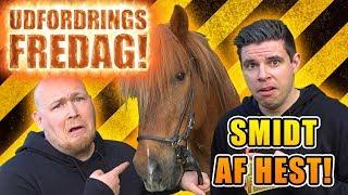 Udfordrings-fredag_-_Rider_på_hest