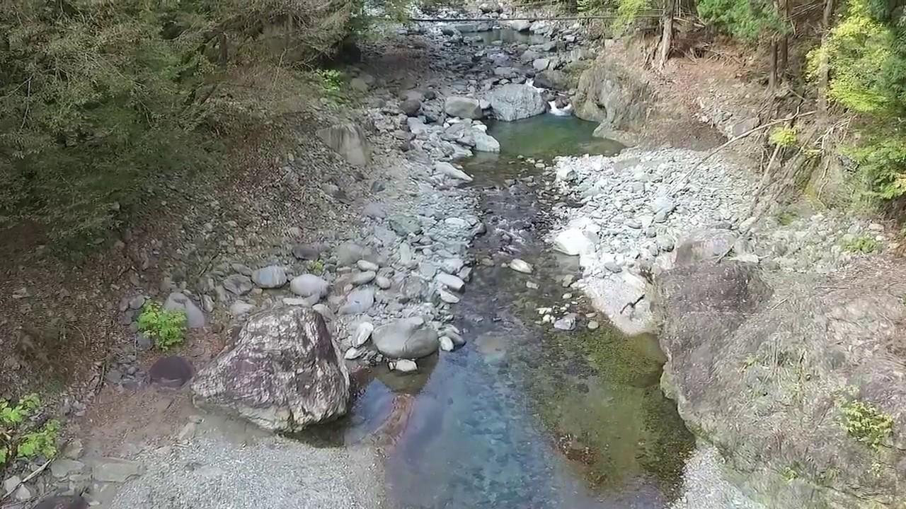 丹沢湖上流域の沢<br>(提供:神奈川県森林再生課)