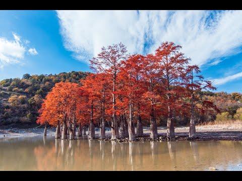 Кипарисовое озеро. Курорт Сукко Краснодарского края