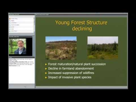 Ecology & Management of Young Forest Wildlife