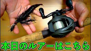 秋のバス釣り!レイドジャパンな組合せで巻物好きバスを探せ! #バス釣り