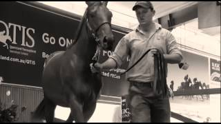 Magic Millions Gold Coast Yearling Sale TVC - 2015 Thumbnail