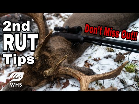 How To Hunt The Second RUT