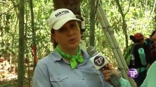 Programa Tecnológica Innova: Programa Isla Barro Colorado