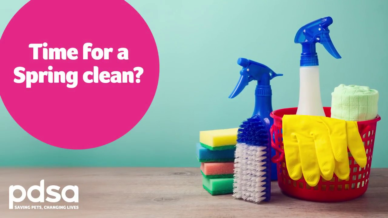 Pets Safe From Toxic Cleaning Products
