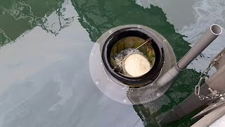 WATCH: Seabin installed in Howth to remove plastic from ocean