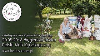 II Międzynarodowa Wystawa Psów Rasowych FOK - PKK w Węgierskiej Górce