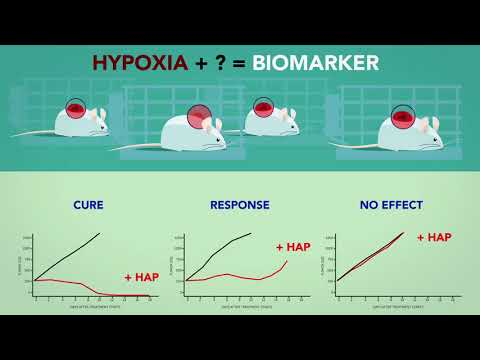 Hypoxia Activated Prodrugs