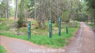 Plodda Falls Glen Affric