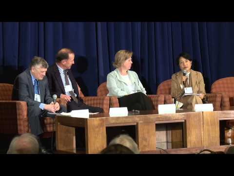 Plenary 4 Finance and Markets - NCSE 2015