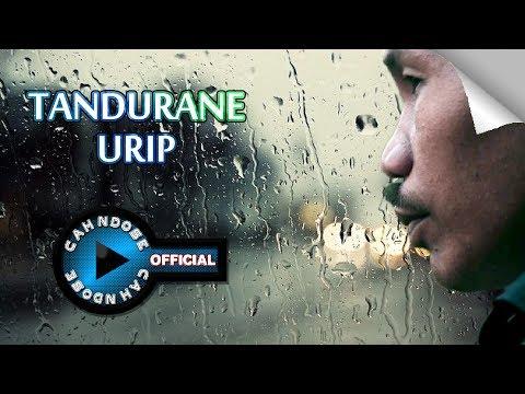 Download Anwar Maulana – Tandurane Urip Mp3 (7.05 MB)
