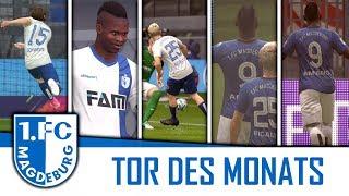 Tor des Monats! #2 | FIFA 18 Karrieremodus -