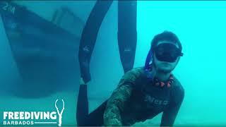 Barbados So Accessable - Freediving Champ Alex Davis