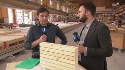 Tele1 Perspektiven 29.01.2019 Tschopp Holzbau AG