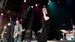 The Undertones - Male Model (Live 2003)
