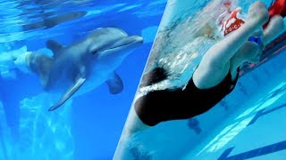 Athlete's Paralympic Journey Inspired by Prosthetic Tail Dolphin | Our Blue Planet | Earth Unplugged