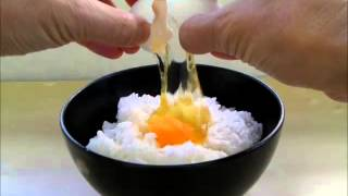 Rice With Raw Egg  Tamago Kake Gohan Recipe