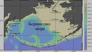 видео Все моря северного ледовитого океана омывающие россию