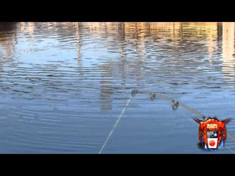 featured-bass-gopro Bass Eats Lure In Ultra Clear Underwater Gopro Footage