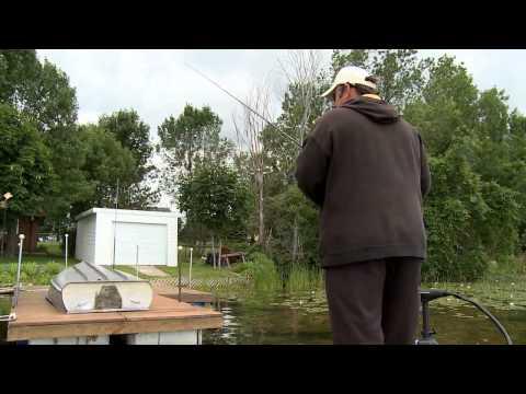 FISH TV Celebrity Showdown /10