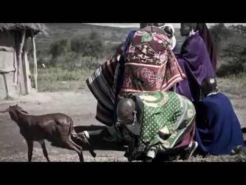 maasai widows 2014 (trip-drop en Tanzania)