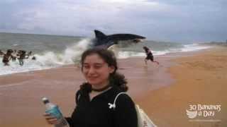 German Backpacker Shark Attack Australian Beach Real or fake?