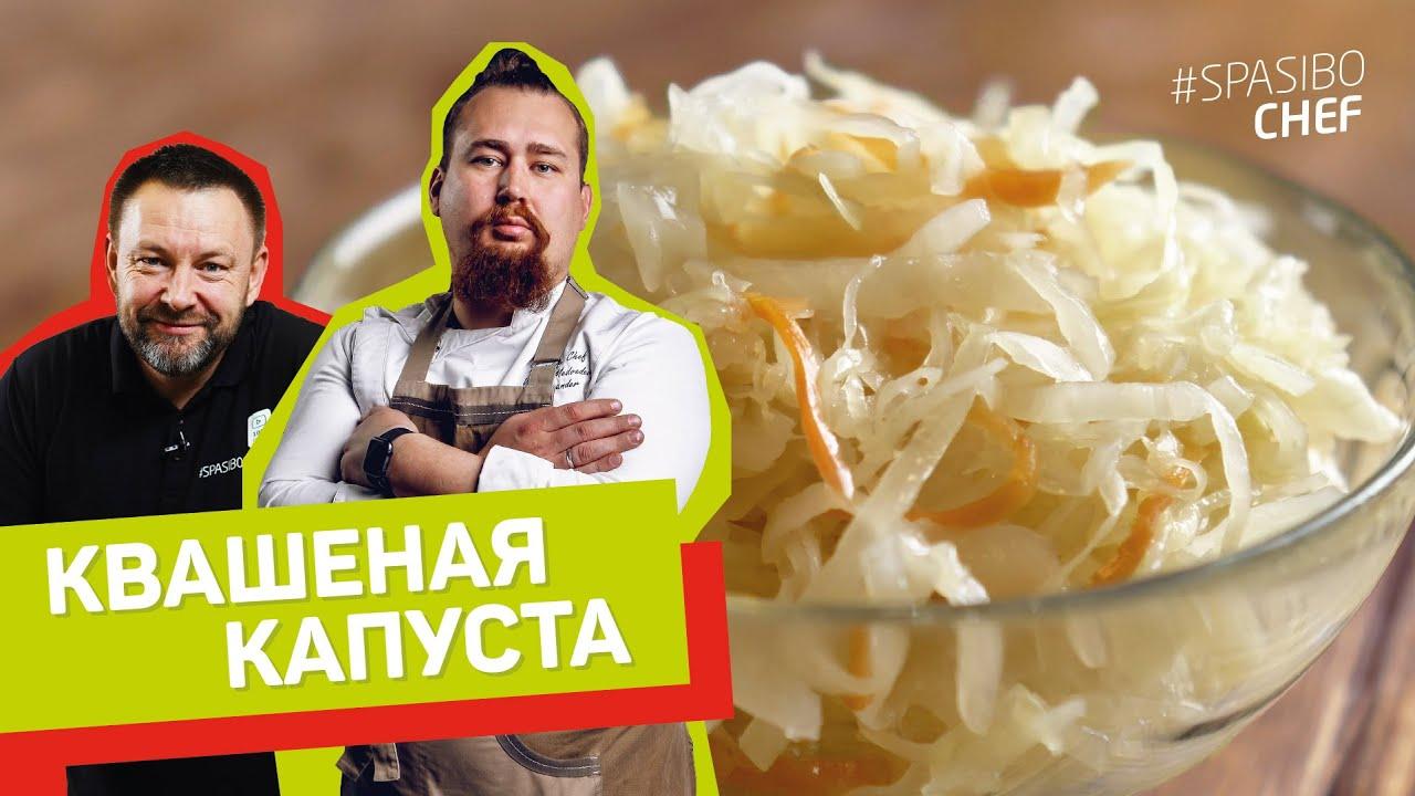 КВАСИМ ПРАВИЛЬНО! Квашеная КАПУСТА - рецепт шеф повара Александра Волкова-Медведева