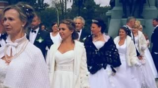 Праздник Белого цветка Симферополь день благотворительности