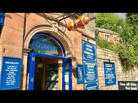 Matlock Bath Aquarium & Exhibitions Vlog 9th September 2018