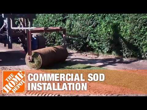Commercial Sod Installation Part 2 | The Home Depot
