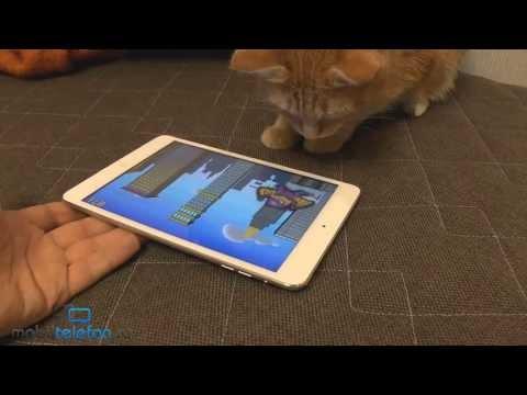 Игры для кошек на IPad: Game For Cats, Paint For Cats и Catzilla